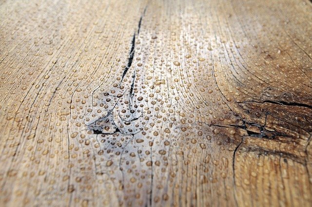 kapky na dřevě