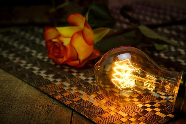 žárovka a růže